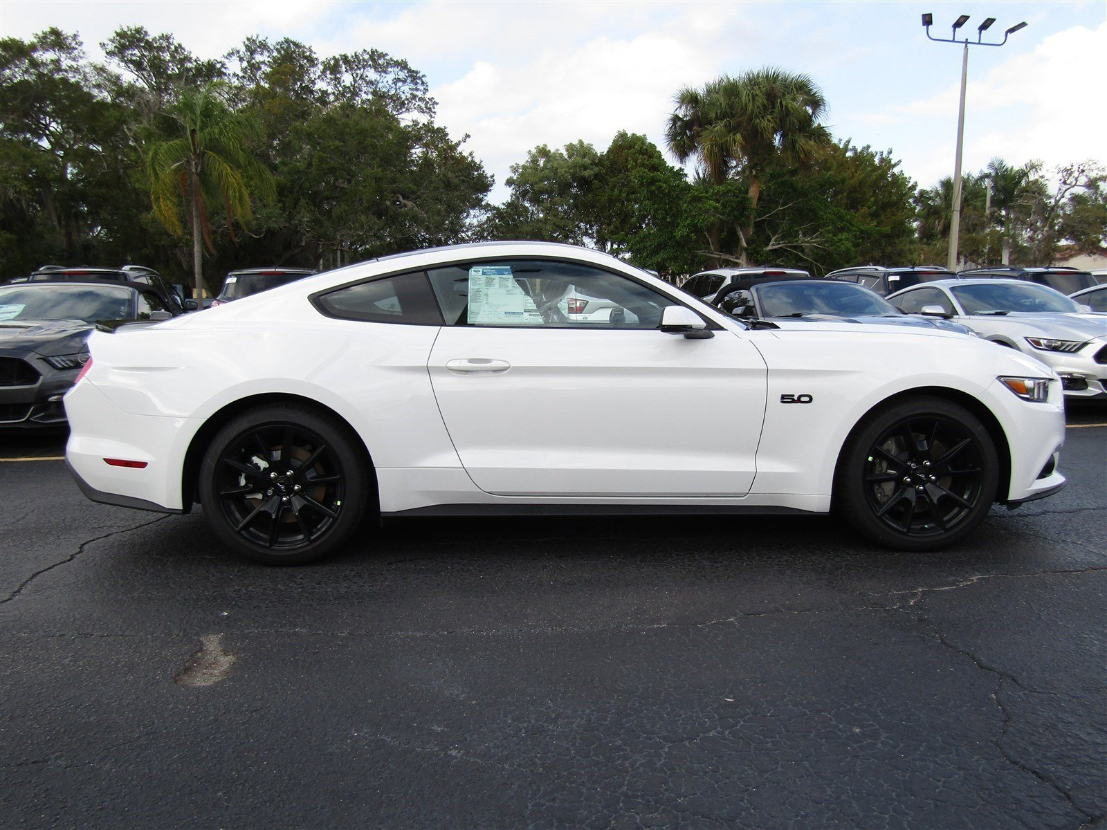 new 2017 ford mustang gt premium 2dr car in sarasota h5270799 sarasota ford. Black Bedroom Furniture Sets. Home Design Ideas